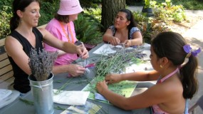 Melissa leading a lavender activity