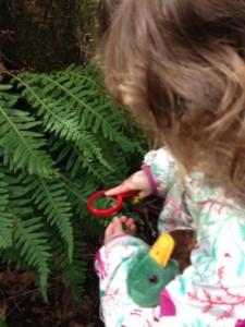 Child examining a fern