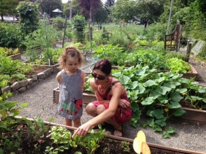 School gardens and education for all ages preschool through 12 grade